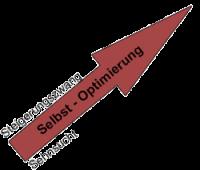 Optimierung-Steigerungszwang-Sehnsucht