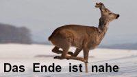das-Ende-ist-nahe-Ingo-Diedrich