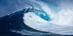 Welle-wollen-wollen