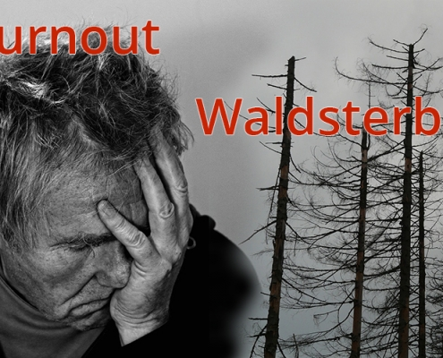Erschöpfung Burnout Waldsterben